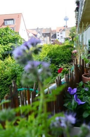 Balkon Aussicht - annablogie