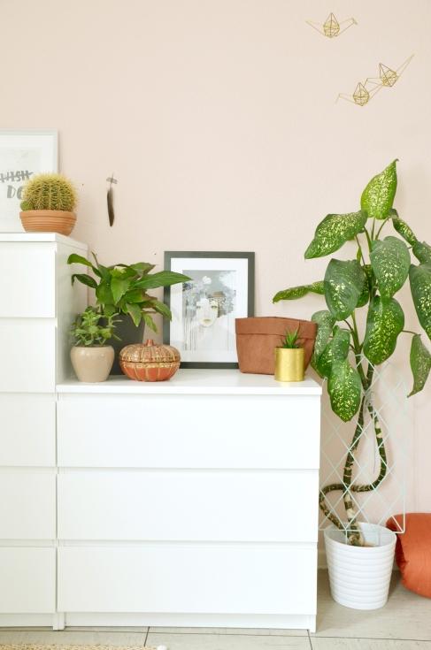 pflanzendeko-im-schlafzimmer_annablogie