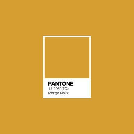 trendfarbe 2019_mango mojito_pantone_annablogie